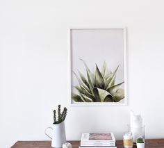 Aloe art print from original watercolour artwork by Tania Estevez