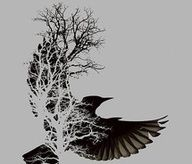 Gorgeous bird / tree tattoo idea for Poe quote Bild Tattoos, Love Tattoos, Beautiful Tattoos, Body Art Tattoos, Crow Tattoos, Tatoos, Phoenix Tattoos, Ear Tattoos, Incredible Tattoos