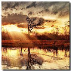 www.fisherauto.com| http://www.facebook.com/coloradohondakiadealer |#Boulder #Sunset #Sunsetoftheday #Gratitude