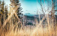 Loučení se zimou s výhledem na Lysou :) #beskydy #lysa #lysahora #velkypolom #hory #mountain #mountains #naturephotography #nature #love #lovenature #landscape #landscapephotography #spring #sunny #sunnyday #tree #trees #from #ostrava #ostravacity #by #janjasiok