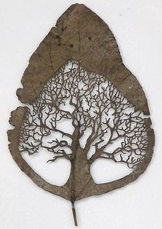beautiful leaf carving made by talented Spanish artist Lorenzo Duran