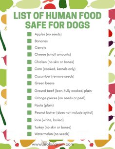 Are you looking for a list of toxic food for dogs? And what is safe to give your pup? This blog post on human food that is dangerous to dogs can help. It even includes a free printable PDF checklist of what you can and cannot feed your pet. Toxic Foods For Dogs, Dangerous Foods For Dogs, Human Food For Dogs, Dog Hacks, Food Lists, Dog Treats, Safe Food, Dog Food Recipes, Pets