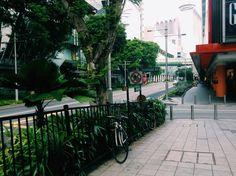 #Singapore #bicycle #trees #street #quite #orchardroad  | yunindriati | VSCO Grid®