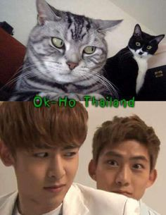 TaecKhun....I see no difference