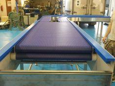 Retractable Conveyor Belt in Modular Plastic designed by C-Trak to deposit rejects in a bin