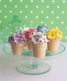 Peggy Porschen's pansy pots Pansy pots on cake stand ~ Make these cakes at least a day before you need them. The pansy flowers can be made well in advance, as they last for weeks. Pretty Cakes, Beautiful Cakes, Amazing Cakes, Flower Pot Cake, Flower Pots, Fondant Flowers, Sugar Flowers, Fancy Cakes, Mini Cakes