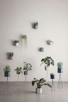 Clever Spaces | New Plant Wall Holders and Stands