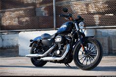 Wallpapers 2015 Harley Davidson Iron 883 - Wallpaper Cave