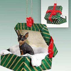 Miniature-Pinscher-Green-Gift-Box-Dog-Ornament