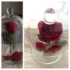 collier la belle et la b te rose rouge sous globe en verre miroir en fimo breloque ch teau et. Black Bedroom Furniture Sets. Home Design Ideas