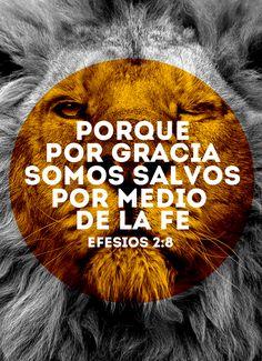 """""""Porque por gracia somos salvos por medio de la fe"""" - Efesios 2:8"""