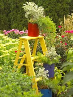Step it up    Turn a short stepladder into a garden focal point with a coat of bright paint, then decorate the steps with your favorite potted combinations in cans. Look for old ladders at garage and estate sales, thrift stores and flea markets.