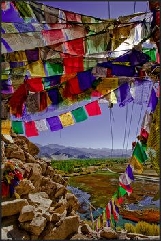 Thiksey Monastery, Ladakh - India via flickr