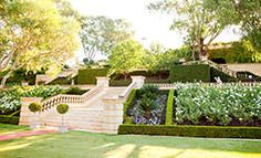 Award Winning Weddings, Events and Corporate Functions Venue in the Swan Valley Region Perth Wedding Venues, Beautiful Wedding Venues, Business Events, Corporate Business, Relaxed Wedding, Google Images, Dolores Park, Wedding Photography, Gallery