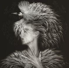 http://www.leehowellphotography.com/album/conceptual