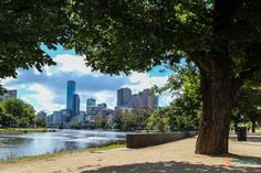 Yarra River, Melbourne - 5 reasons to stay at Mantra Southbank Visit Australia, Melbourne Australia, Australia Travel, Places In Melbourne, Animals Information, Best Beaches To Visit, Travel Bugs, Amazing Places, Rivers