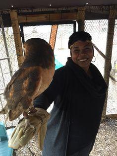 I love Owls! Owls, My Love, Owl, Tawny Owl