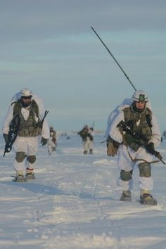 Army paratroopers with Alaska's Infantry Brigade Combat Team (Airborne), Infantry Division, snowshoe across the drop zone during Exercise Spartan Pegasus at Deadhorse, Alaska, Feb. Army Police, Military Careers, Winter Survival, Staff Sergeant, Paratrooper, Modern Warfare, Winter Is Coming, Special Forces, Marine Corps