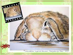 """""""Bunny No. 1"""" Kaninchenportrait nach Fotovorlage/ Animal portrait painted from photograph; with water colour on Hahnemühle Paper © Wandklex Ingrid Heuser künstlerische Wandbemalung, Ratzeburg/Germany - ein Designerstück von wandklex bei DaWanda, - in meinem kleinen Klexshop http://de.dawanda.com/shop/wandklex können Sie Ihr persönliches Bild nach Ihrer eigenen Fotovorlage bestellen."""
