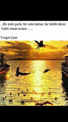 Bir eski şarkı, bir eski bahar, bir bildik deniz Vakit Nisan ortası Turgut Uyar