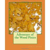 Adventure of the Wood Pixies (Paperback)By shirley boykin