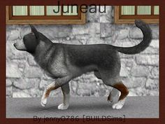 Juneau Australian Cattle Dog by jenny0786 - Sims 3 Downloads CC Caboodle