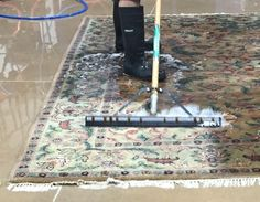 Rug Cleaning Jupiter Services Area