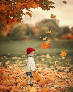 Autumn Leaves, Fallen Leaves, Good Morning Images, Falling In Love, Children, Photography, Painting, Beautiful, People