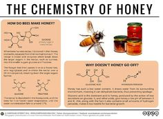 """132 Likes, 3 Comments - Vanessa hoo (@mademoisellebee06) on Instagram: """"Here a little explanation on the #chemistryofhoney #honey #honeybees #chemistry"""""""
