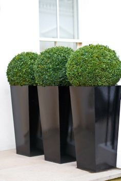 Tall Square Planter door - Google Search