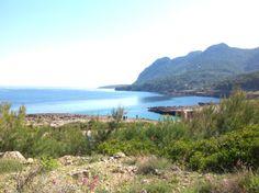 Cocodrilo Bay, Alcudia, Mallorca