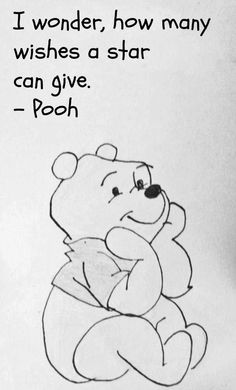 Pooh and the Wishing ☆Star....