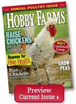 Hobby Farms - Pigs of a different color - all about the Tamworth Breed