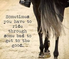 Sometimes ... Rodeo Quotes, Equine Quotes, Equestrian Quotes, Equestrian Problems, Hunting Quotes, Cowboy Quotes, Quotes Quotes, Life Quotes, Horse Riding Quotes