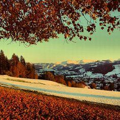 #schweiz #suisse #switzerland #igerssuisse #suizzera #berneroberland #emmental #baum #tree #nature_perfection #treeworld #winter #autumn #herbst #naturelovers #instanaturelover #igerseurope #igersworldwide #snow #sky #hohgant #swissmountains #mountain_love #my_switzerland #igers #friendsoftheworld - @nigy84