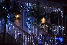 Franklin Road Dec 2012. The old wooden villas lend themselves to being draped in lights.