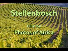 Stellenbosch town in the Cape winelands - Western Cape - South Africa. #Stellenbosch
