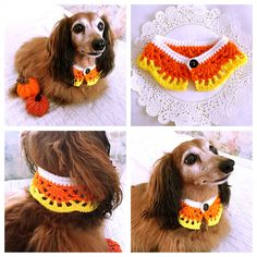 Crochet Dog Scarf, Dog Collar, Halloween Candy Corn Dog Bandana, Cat Scarf, Pet Accessory, Pet Clothing Apparel, Pet Scarf, Present for Dogs