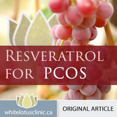 What causes PCOS ? Some new ideas on an ancient disease and modern women « Toronto Naturopath | Women's Health, Fertility, Thyroid, Autoimmune Toronto Naturopath | Women's Health, Fertility, Thyroid, Autoimmune