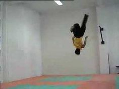 Taekwondo - fly kick - YouTube