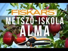 Az alma metszése - Fiskars metsző-iskola/ KertTV - YouTube Ale, Mint, Make It Yourself, Gardening, Youtube, House, Home, Ale Beer, Garten