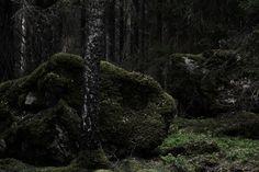 forndom:  Viþer - VIII Forndom