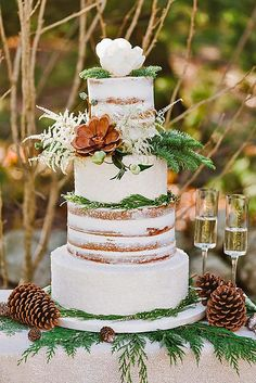 Fabulous Winter Wedding Cakes We Adore ❤ See more: http://www.weddingforward.com/winter-wedding-cakes/ #weddings