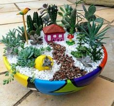 Mini Cactus Garden, Fairy Garden Pots, Indoor Fairy Gardens, Garden Terrarium, Miniature Fairy Gardens, Small Gardens, Succulent Planter Diy, Succulent Gardening, Succulents Garden