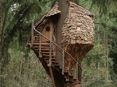 The beehive treehouse