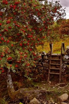 A stile at rock fence (1) From: Nefaeria Of Etsy, please visit