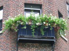 fifia décor blog: décoration de pots de fleurs suspendus