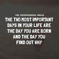 Have you found your calling? ________________ Credit To . . . . . . #millionairemindset #lifegoals #makemoney #moneymaker #positive #getmoney #makingmoney #moneymotivated #transformation #passion #moneyonmymind #moneytalks #moneymakers #timeismoney #energy #confidence #goodvibesonly #hustle #hustlehard #lovemyjob #hustleharder #entrepreneur #entrepreneurship #workflow #entrepreneurial #work #hardwork #workhard