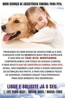 TAXI DOG MONTANHA TRANSPORTE DE ANIMAIS NO RIO DE JANEIRO: PLANO DE ASSISTÊNCIA FUNERAL PARA PETs O QUE VOCÊ ...