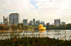 Worlds Largest Rubber Duck Will Be On Tour To Celebrate Canada's 150th#Canada #Canadian #CanadaDay #Toronto #Ontario #Tour #Adventure  Facebook: https://www.facebook.com/cdnaficionado  Instagram:  https://www.instagram.com/cdnaficionado/  Twitter:  https://twitter.com/cdnaficionado